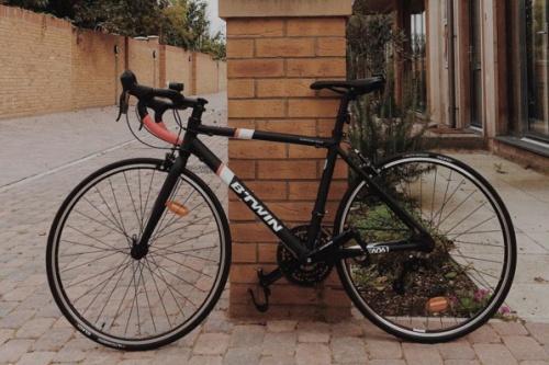 beyoncycle